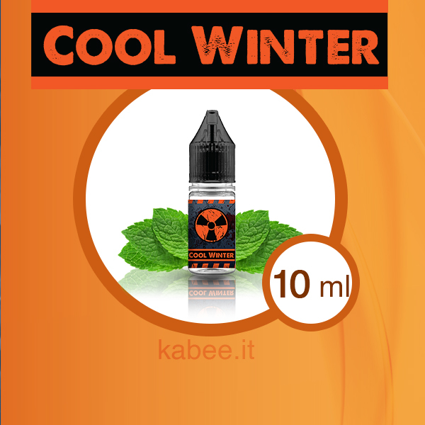 Aroma liquido Cool Winter formato 10 ml